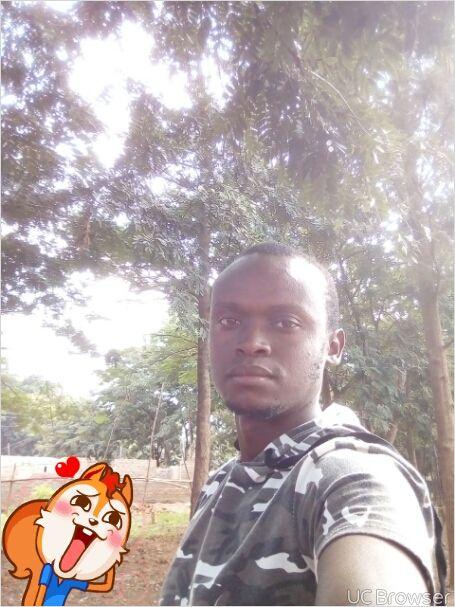 Kwarula